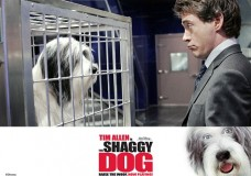 The Shaggy Dog (2006) Tamil Dubbed Movie HD 720p Watch Online