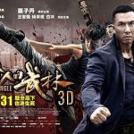 Kung Fu Jungle (2014) Tamil Dubbed Movie HD 720p Watch Online (Clear Audio)